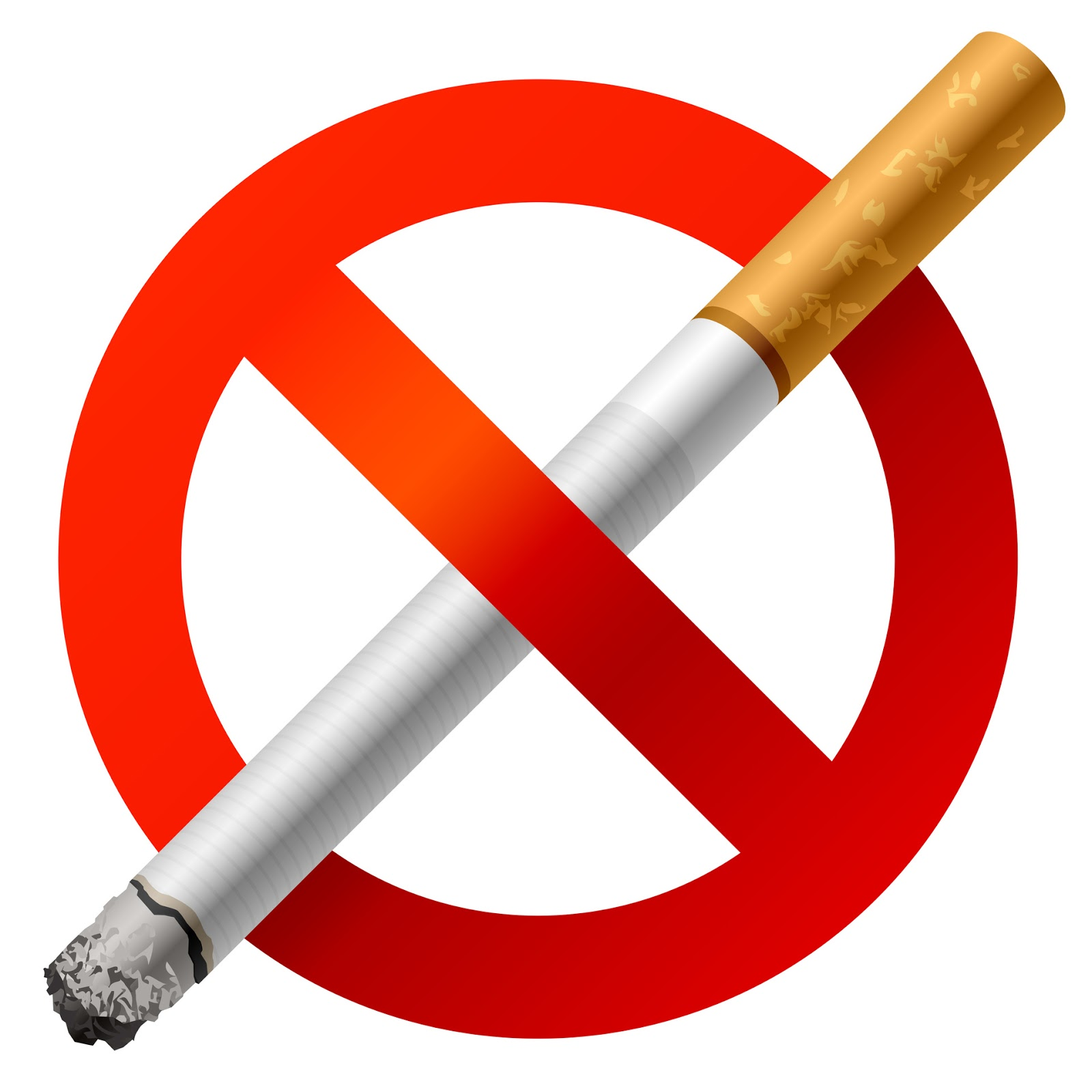 sample essay on should smoking be banned in public places
