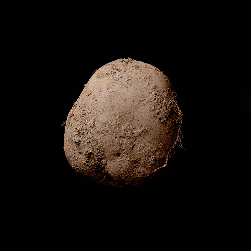 1-million-potato-photograph