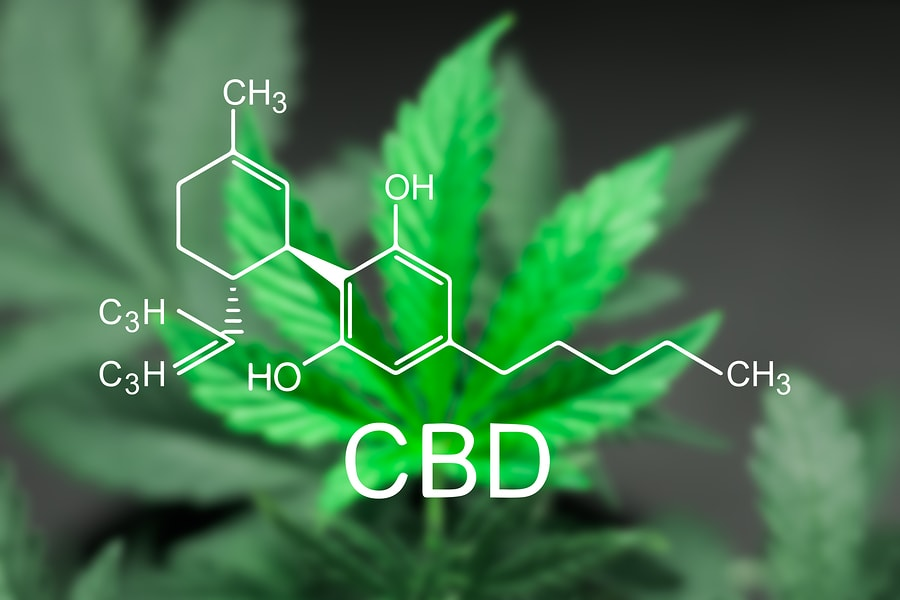 How Is CBD Oil Changing The Landscape Of Medicine The Way We Knew It
